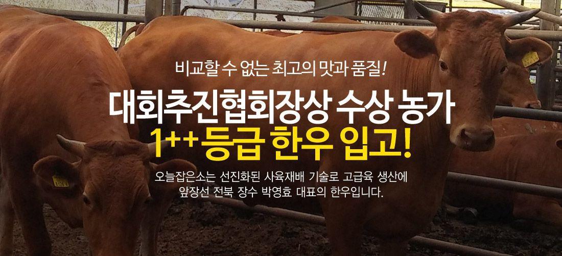 육량우수 대회추진협회장상 수상 전북장수 1++등급 한우